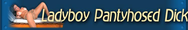 Ladyboy Pantyhosed Dicks